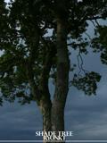 Ryonkt - Shade Tree