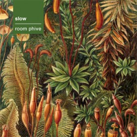 RB049 - slow - room phive